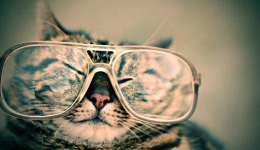 【JINS】メガネを売ってくれなかった販売員が教えてくれた、ブログ売り上げアップの秘訣