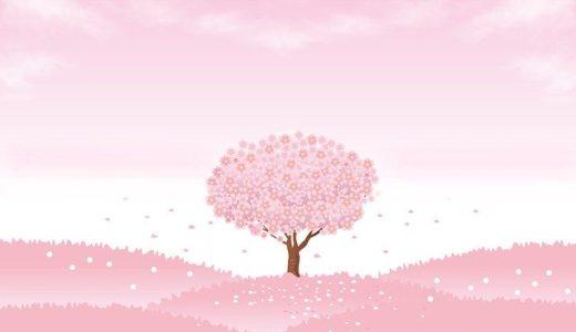 あの日ぼくは、桜の木の下に罪悪感を埋めた
